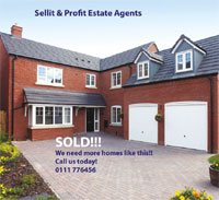 Sellit & Profit Estate Agency image