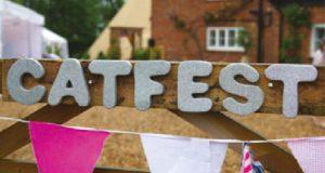 Catfest fundraiser music festival image