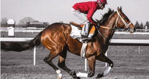 Jockey image