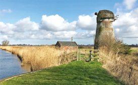 Norwich windmill image