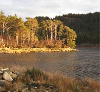 Scottish Water image
