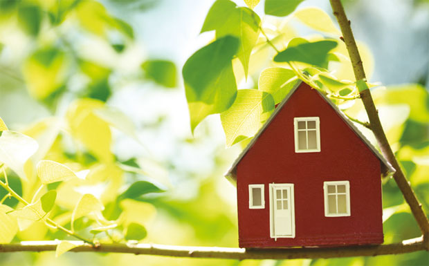 Green Deal image