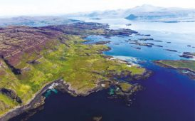 Ulva Island image