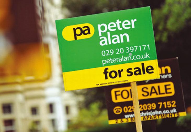 Peter Alan signboard image