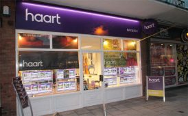 Rayleigh haart branch image