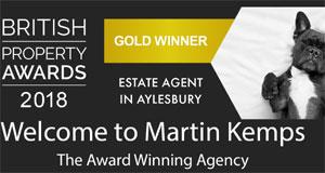 Martin Kemps banner image