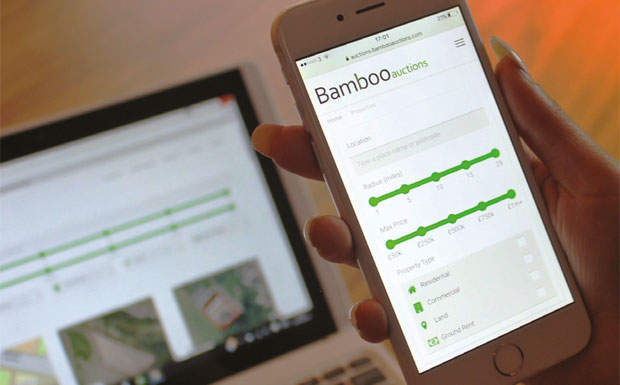 Bamboo auction image