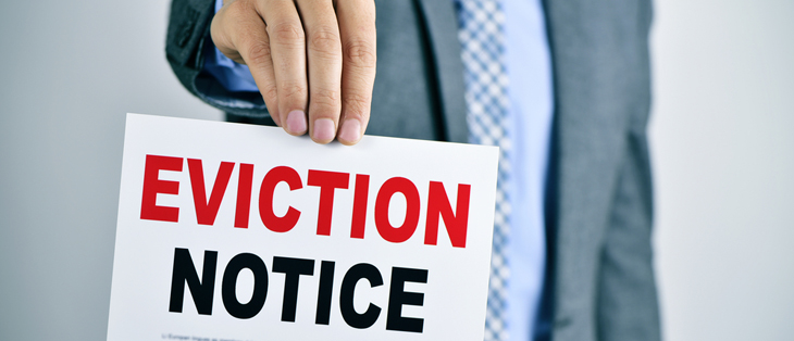 Govt softens blow of eviction ban proposals with upgraded Section 8