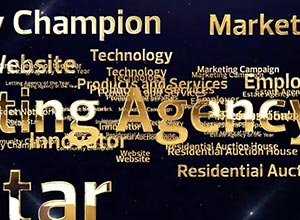 The Negotiator Awards Shortlisted Estate Agents Window image