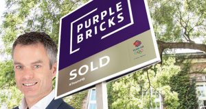 Davis Purple Bricks image
