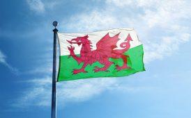 welsh flag ltt stamp duty