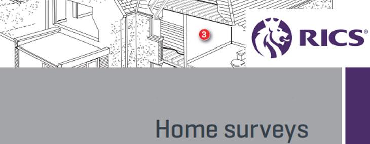 home surveys