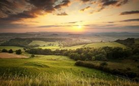 Natural capital land site