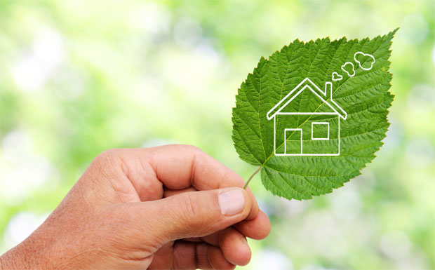 Link to Sustainability feature