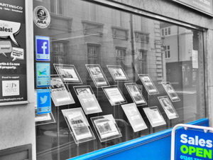 Agents window display image