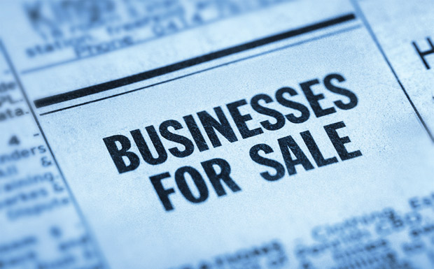 Businesses For Sale image