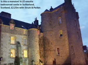 castle_mansion_tax