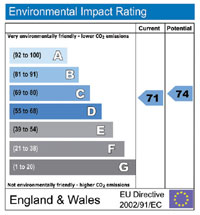 Environmental Impact Rating chart