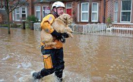 Flood image