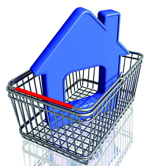 house-graphic-in-shopping-basket