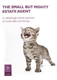 print marketing cat image