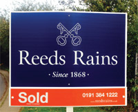 sold_board_reeds_rains